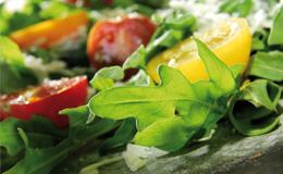 suppen-salate-vorschau